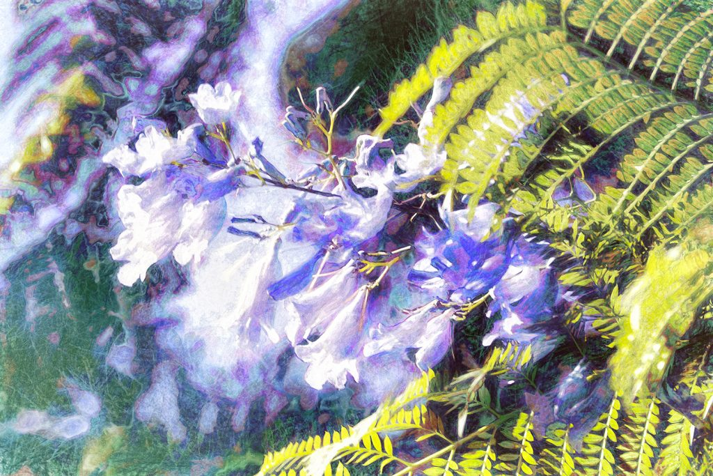 purple flowers and fern