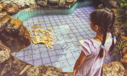 little girl standing over pool of fish